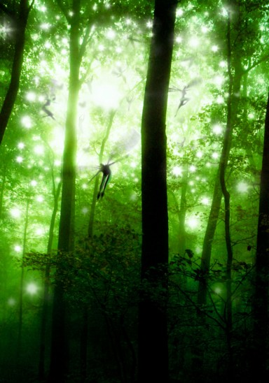 art faeries forest