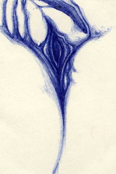 erotic blue pen drawing 05