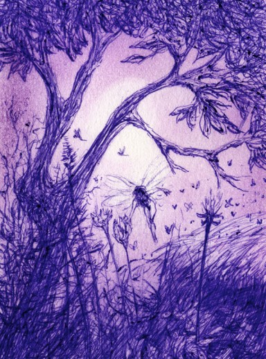 faeries sketch 02