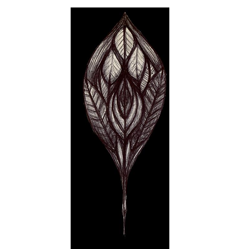 leaf-black-2014-03-24-b