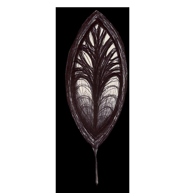 leaf-black-2014-03-24-c