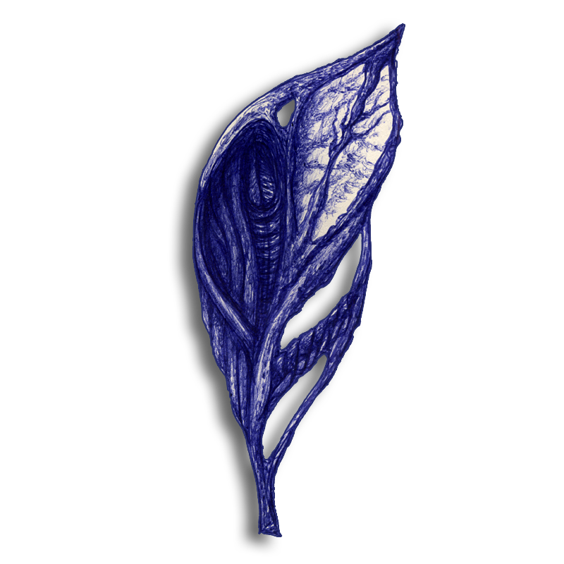 leaf-blue-2014-03-01