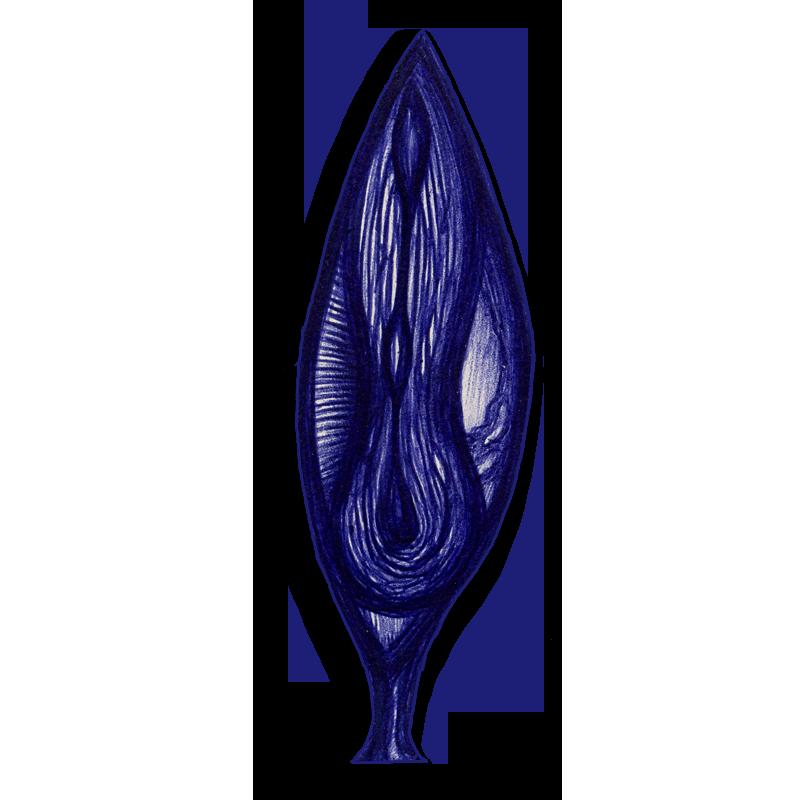 leaf-blue-2014-03-06