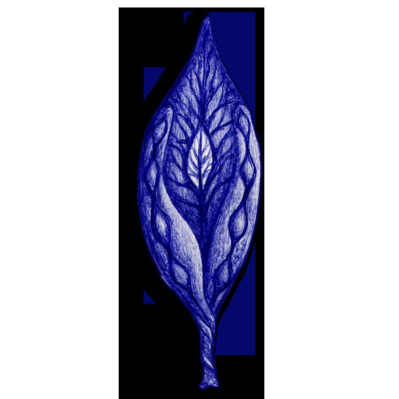 leaf-blue-2014-03-08-c
