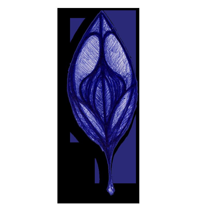 leaf-blue-2014-03-25-d
