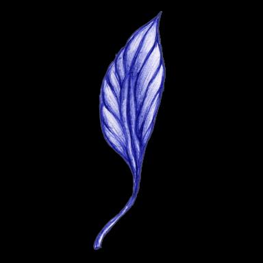 leaf blue 2014 03 26 b