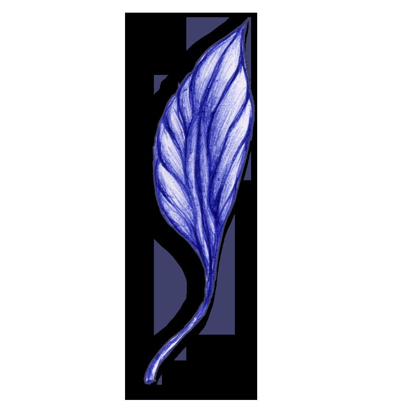 leaf-blue-2014-03-26-b