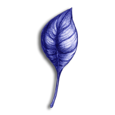 leaf blue 2014 03 26 d