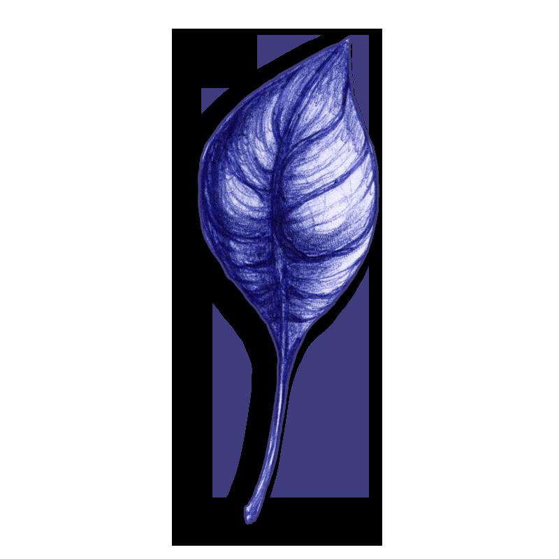 leaf-blue-2014-03-26-d