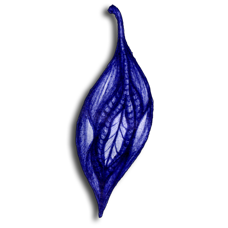 leaf-blue-2014-04-09-15-00