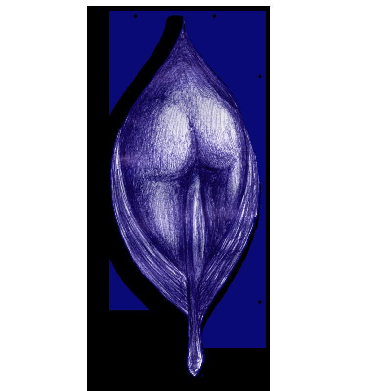 leaf-blue-2014-04-13-14-00